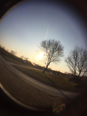 Image_18